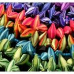 Project #2 Ruffle Flower Spiral Brooch