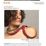 Racine Art Museum Symposium
